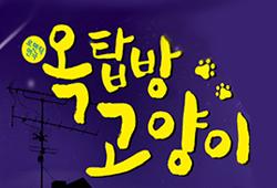 [초대]옥탑방 고양이