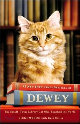 Dewey : the Library Cat