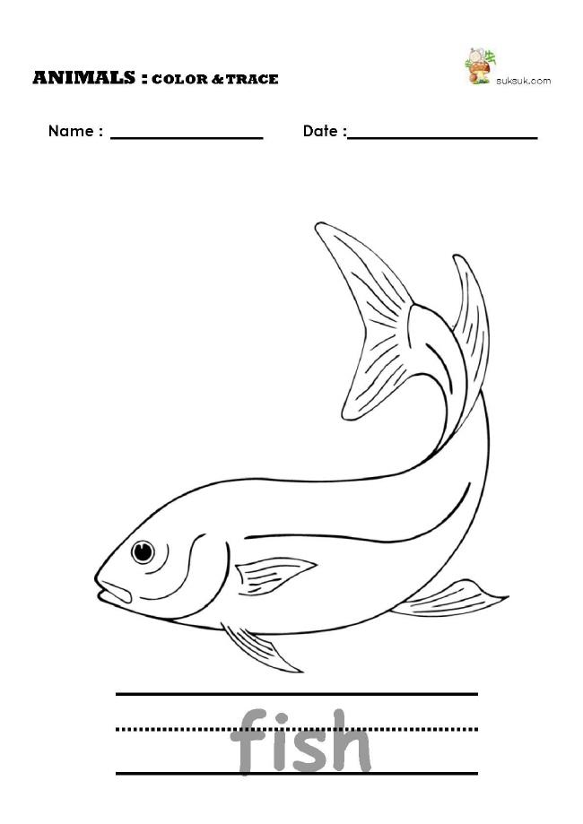 샘플 이미지